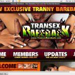 Transex Bareback Account Membership